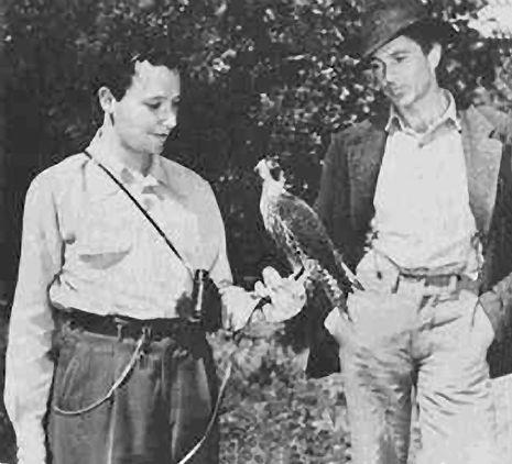 205 Bill - the Hawk and Cooper.jpg