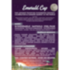 Emerald Cup - 4x4 - 2020.png