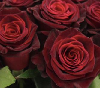 Large Valentines Bouquet
