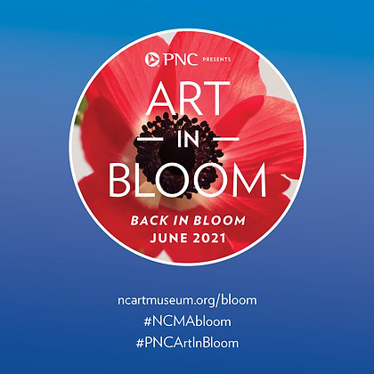 Working with Color at NCMA Art in Bloom