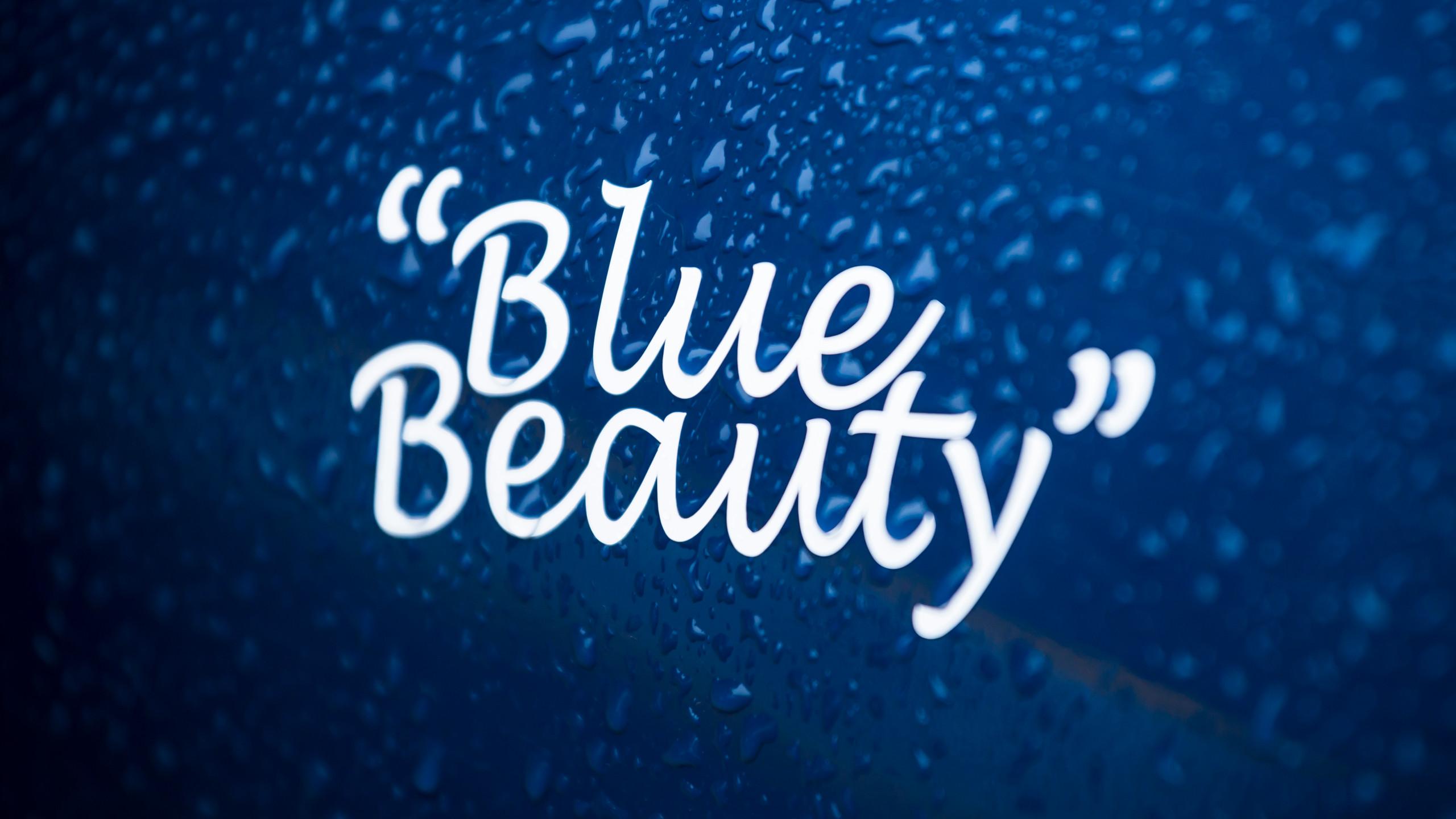 """""""Blue Beauty"""""""
