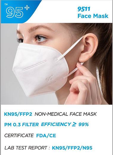 KN95_Facts.jpg