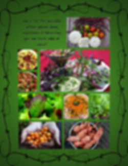 5Food - Garden Discoveries - Vegan.png