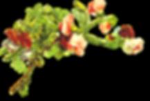 Garden of Eden (6).png