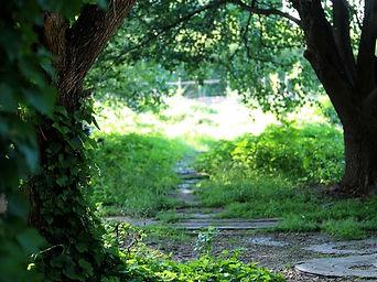 Garden of Eden11.jpg