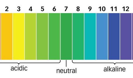 What is pH and What Does It Mean for Your Health?
