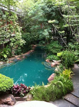 Garden of Eden 7.jpg
