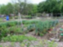 Garden of Eden9.jpg