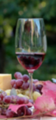 Wine With Everything -  Garden.jpg