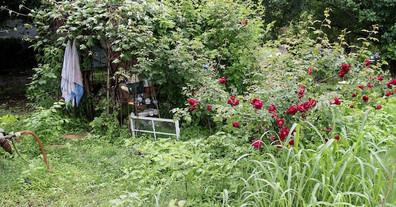 secret-garden4.jpg