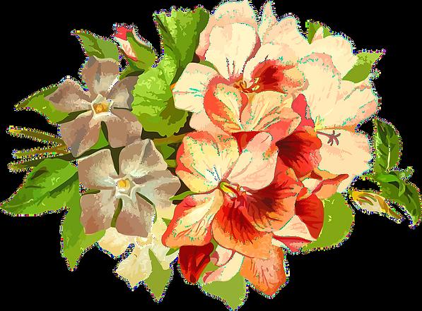 Garden of Eden flower_edited_edited.png