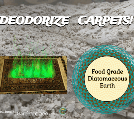 How to Use Food Grade Diatomaceous Earth to Deodorize Carpets