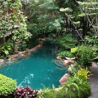 Garden of Eden 13.jpg