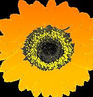 garden of eden flower2.png