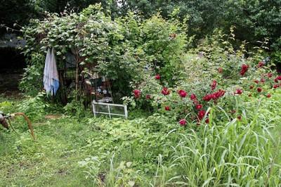 Garden of Eden3.jpg