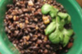 Garden of Eden black beans.jpg