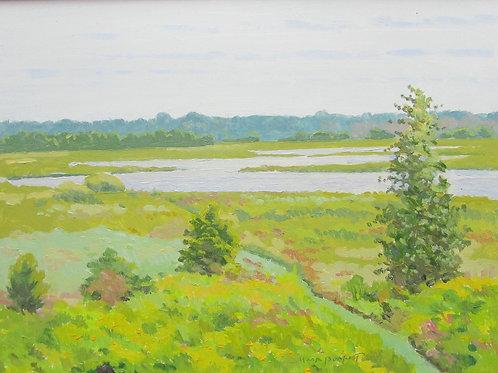 'Eagle Marsh' by Mark Burkett