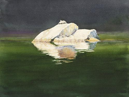 'Ghost Turtle' by Brian Gordy