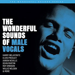 The Wonderful Sounds Of Male Vocals