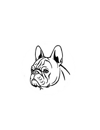 pup3.png