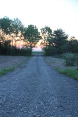 farm drive sunset