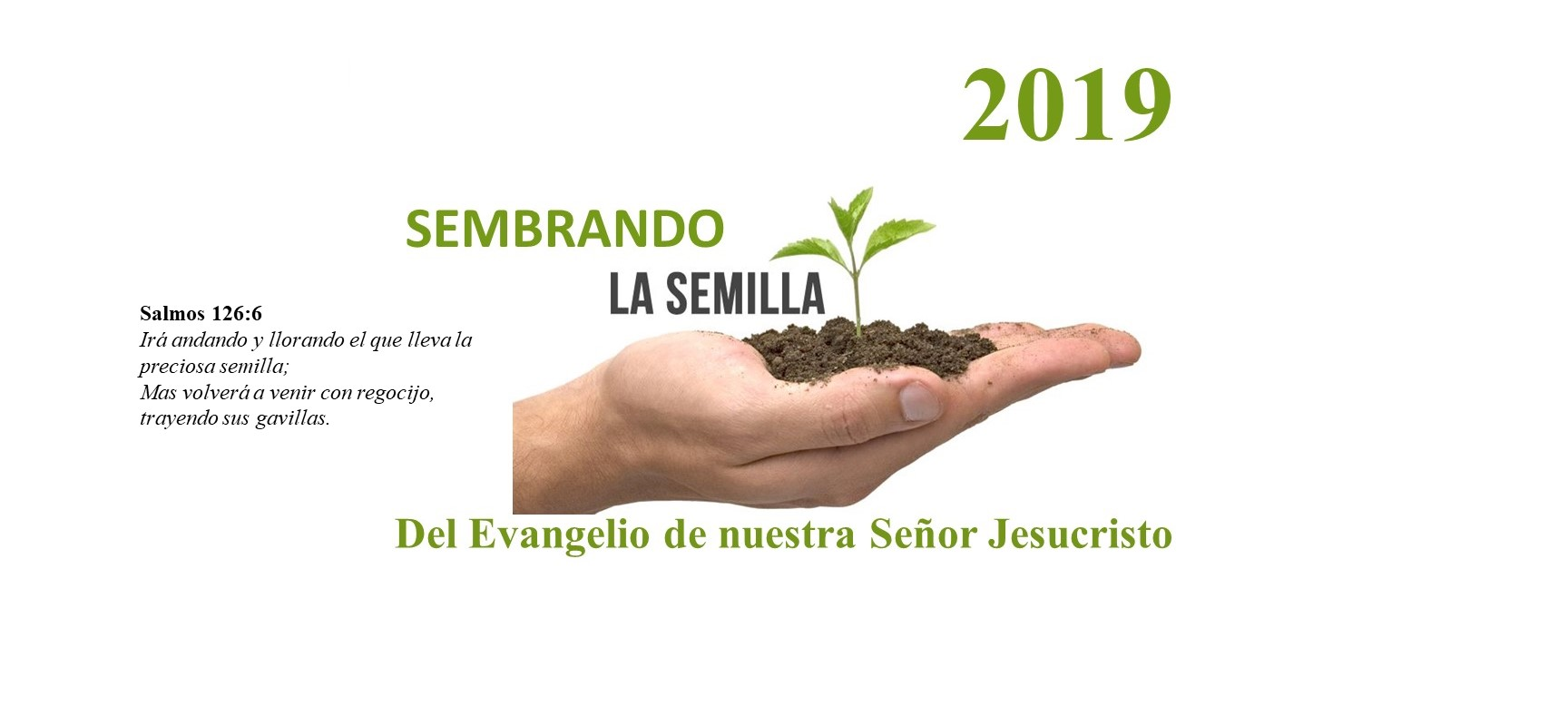 IBE website Tema 2019