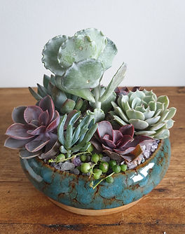 Blue ceramic succulent dish filled with mixed succulents and finished with decorative grav