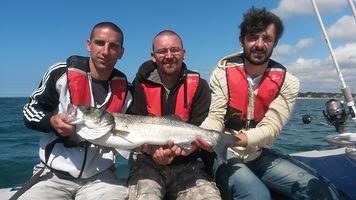 Sortie entre copains avec FISHING BREIZH ÎLES pour plusieurs bars dont ce spécimen