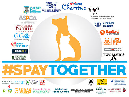 Logo #SpayTogether JPG.jpg