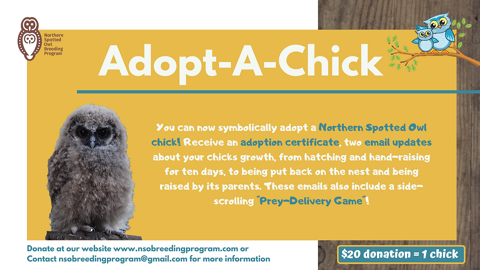 Adopt-A-Chick Event Cover Photo.png