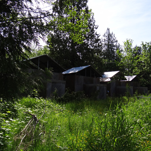 The facility in the summer