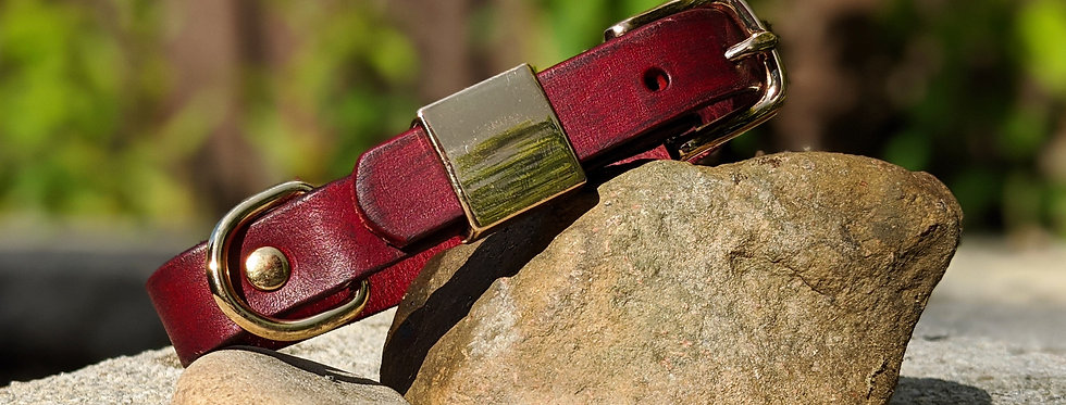 The Andalusian in Aged Leather