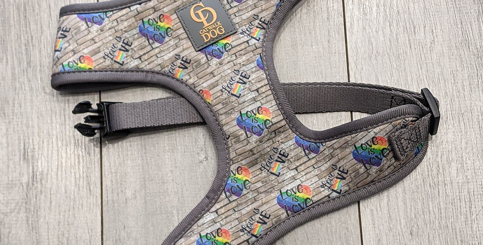 The Love Is Love Harness