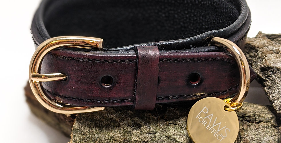The Pharaoh Collar in Aged Leather