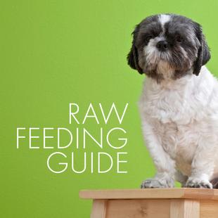 Raw Food FAQs