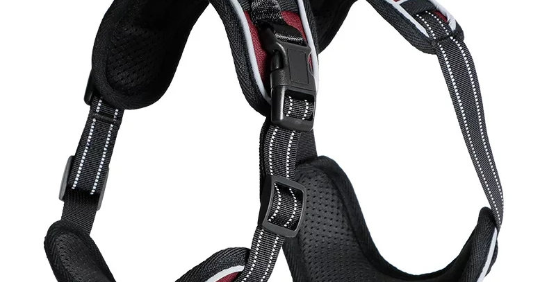The Dog and Hound Anti Pull Harness