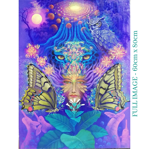 Ayahuasca Vision #6