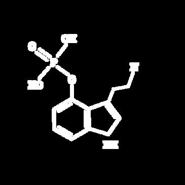 Psilocybin molocule.png