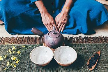 spirit plant medicine therapy.jpeg