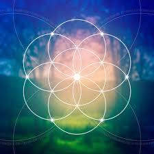 The consciousness matrix