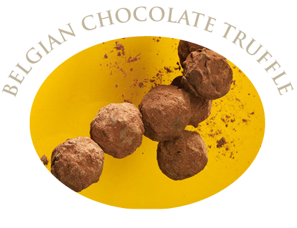 belgian-chocolate-truffle-icon.png