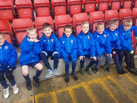 U7'S FLY THE FLAG AT YORK CITY