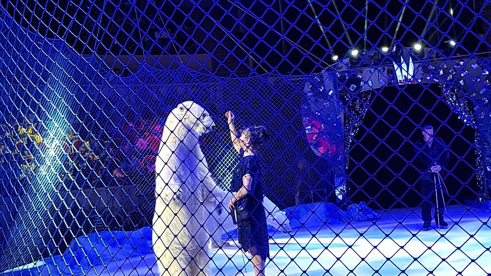 קרקס סנט פטרסבורג הגדול - בולשוי עם מופע המשלב חיות, כלבים, דובים ועוד