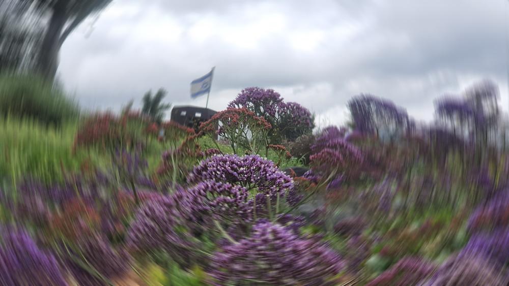 פרחים יפים ומשוריין עם דגל ישראל
