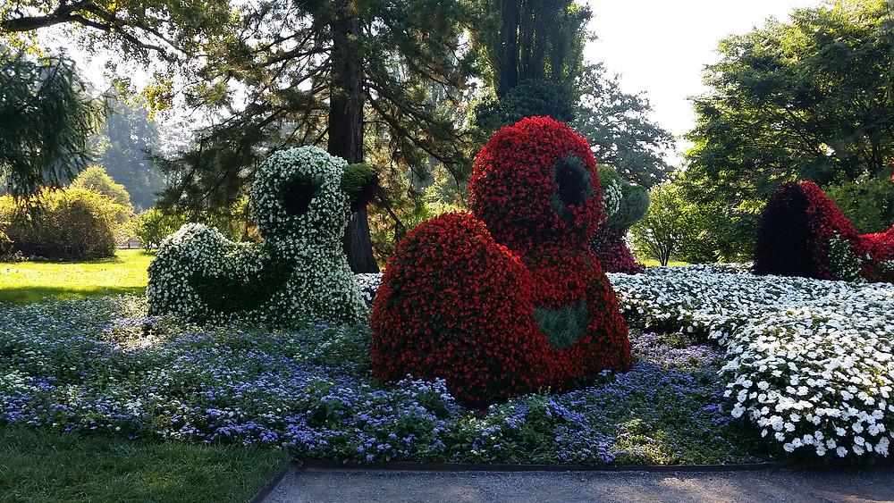 אי הפרחים הפרטי מאינאו הנמצא בגרמניה