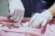 esterilizacion_trabajo diario__07 de dic