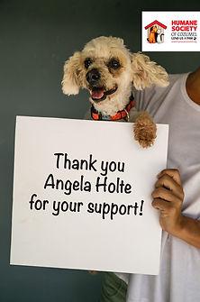 Thank you Angela Holt.jpg
