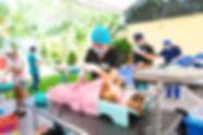 Campaña_de_100-02_de_junio_de_2019-_MG_8
