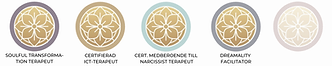ICT Terapeuter Indelning 2.png