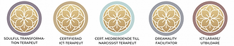 ICT Terapeuter Indelning 1.png
